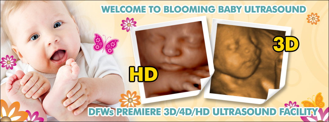 Where to get 3d ultrasound